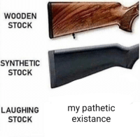 me_irl: WOODEN  STOCK  SYNTHETIC  STOCK  LAUGHING  STOCK  my pathetic  existance me_irl