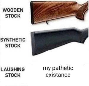 me_irl by Tomm_Chipp MORE MEMES: WOODEN  STOCK  SYNTHETIC  STOCK  LAUGHING  STOCK  my pathetic  existance me_irl by Tomm_Chipp MORE MEMES
