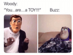 "buzz: Woody:  ""You...are....a TOY!!!""  Buzz:"