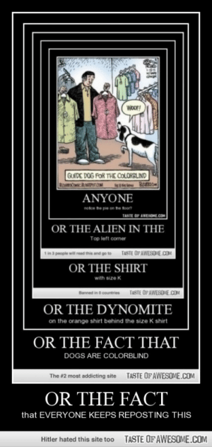 Or the facthttp://omg-humor.tumblr.com: WOOF!  GUIDE DOG FOR THE COLORBLIND  ANYONE  notce he pie on he foon  TASTE OF AWESOME.COM  OR THE ALIEN IN THE  Top left corner  d go to  TASTE OFAWESOME.COM  OR THE SHIRT  with size K  Banned in O countries  TASTE OFAWESOME.COM  OR THE DYNOMITE  on the orange shirt behind the size K shirt  OR THE FACT THAT  DOGS ARE COLORBLIND  TASTE OF AWESOME.COM  The #2 most addicting site  OR THE FACT  that EVERYONE KEEPS REPOSTING THIS  TASTE OF AWESOME.COM  Hitler hated this site too Or the facthttp://omg-humor.tumblr.com