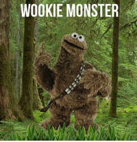 "Dank, Monster, and 🤖: WOOKIE MONSTER ""W"" is for Wookie."