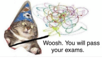 Good luck people!: Woosh. You will pass  our exams Good luck people!