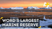 A historic deal just made the pristine wilderness of Antarctica the world's largest marine reserve.: WORD'S LARGEST  TMARINE RESERVE A historic deal just made the pristine wilderness of Antarctica the world's largest marine reserve.