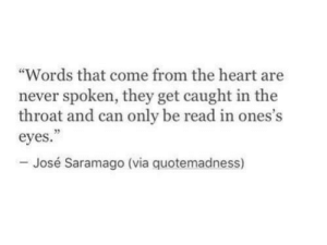 "Jose: ""Words that come from the heart are  never spoken, they get caught in the  throat and can only be read in ones's  eyes  - José Saramago (via quotemadness)  32"