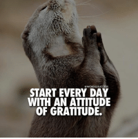 Memes, 🤖, and Tap: WORDS2SUCCESS  START EVERY DAY  WITH AN ATTITUDE  OF GRATITUDE. DOUBLE TAP if you agree🙏 words2success . TAG friends to motivate!