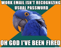 I hope nobody gets passive-aggressively fired: WORK EMAIL ISN'T RECOGNIZING  USUAL PASSWORD  OH GOD I VE BEEN FIRED  made on imgur I hope nobody gets passive-aggressively fired