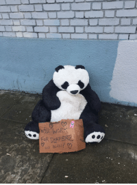 Sad Panda: WORK.  GOD BLESS Sad Panda