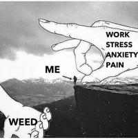 Wee, Weed, and Work: WORK  STRESS  NXIETY  PAIN  ME  WEE Cannabis helped me break down that barrier that kept me from being a better person. Your health and survival should not depend upon a law.