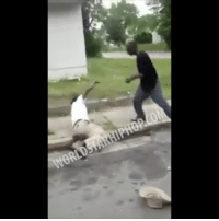 Memes, Old Man, and Worldstar: WORL Old Man Knocks Out A Guy Who Allegedly Stole From Him! 😳👊 Watch Now On WorldStarHipHop.com & The WorldStar App! (Posted by @KingJessee) WSHH