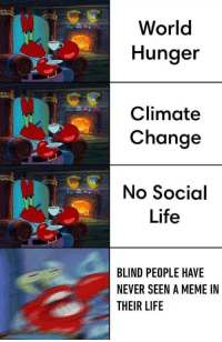 Life, Meme, and Memes: World  Hunger  Climate  Change  No Social  Life  BLIND PEOPLE HAVE  NEVER SEEN A MEME IN  THEIR LIFE Think of the poor people via /r/memes http://bit.ly/2E6G0qI