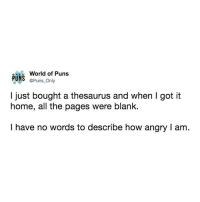 Puns, Twitter, and Home: World of Puns  PUNS @Puns Only  l just bought a thesaurus and when I got it  home, all the pages were blank.  I have no words to describe how angry I am. Twitter: @puns_only Insta: @punsonly