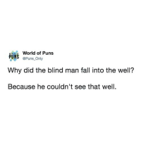 Fall, Instagram, and Puns: World of Puns  PUNS Puns Only  Why did the blind man fall into the well?  Because he couldn't see that well Instagram: @punsonly