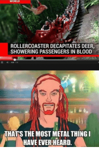 Bloods, Deer, and Memes: WORLD  ROLLERCOASTER DECAPITATES DEER,  SHOWERING PASSENGERS IN BLOOD  THANS THE MOST METAL THING I  HAVE EVER HEARD. I am sorry about the deer but das ist pretty brutal indeed. -Walt-