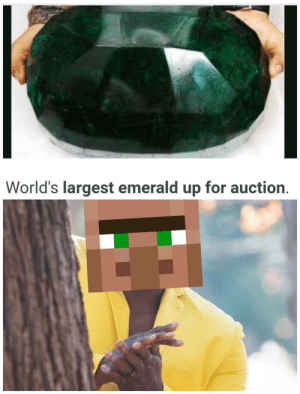 """nonexistent-emo:""""Hrmmm (I will give you one fish)"""" : World's largest emerald up for auction. nonexistent-emo:""""Hrmmm (I will give you one fish)"""""""