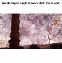 Funny, Wild, and Single: Worlds largest single firework shell, this is wild! Dammmn