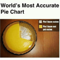 wellyeah yup right hahaha: World's Most Accurate  Pie Chart  Piel have eaten  yet eaten wellyeah yup right hahaha