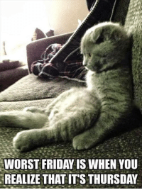 Worst Friday is when you realize its only Thursday MOL  #cat Good Morning All, have a great day: WORST FRIDAY IS WHEN YOU  REALIZE THAT ITS THURSDAY Worst Friday is when you realize its only Thursday MOL  #cat Good Morning All, have a great day