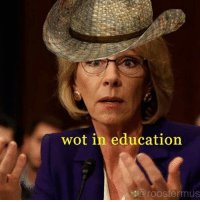 this is my favorite meme now - 👾: wot in education  Oaroostermus this is my favorite meme now - 👾