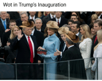 Wot In: Wot in Trump's Inauguration