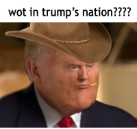 Wot In: wot in trump's nation????  heck