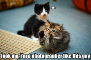 Omg, Tumblr, and Blog: Wot  look ma,rtmaphotographer like this guy omg-images:  Imitation
