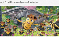 <p>Old meme + New meme = Meta meme + updoots</p>: wot 'n all known laws of aviation <p>Old meme + New meme = Meta meme + updoots</p>