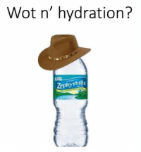 American Dad, Memes, and 🤖: Wot n' hydration?  Zephyrhills American dad is all I need in life ~Michaela •••••••••••••••••••••••••••••••••••• TAGS TAGS TAGS TAGS TAGS tumblrtextpost tumblrposts textpost tumblr shrek instatumblr memes posts phan funnythings 😂 same funny haha loltumblr lol relatable rarepepe funnythings funnytextposts pepeislife meme funnystuff pepe food spam