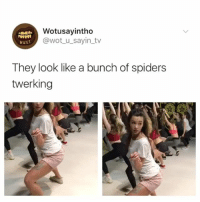 Af, Halloween, and Starbucks: Wotusayintho  @wot_u_sayin tv  eust  They look like a bunch of spiders  twerking Spooky af 🕷 😂 twerk spooky halloween starbucks