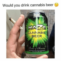 Beer, Drinking, and Memes: Would you drink cannabis beer (1.  CANNABIS  BEER  todiic  mslerdam  BREWED FOR MULTITRANCE  4.9 ALG. BY VOL Would you? 🔥 @TheDailyChief420 - Check out my bro @YourDailyKush for some more 🔥 - 📷: @marijuana.tv