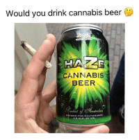 Beer, Memes, and Marijuana: Would you drink cannabis beer  CANNABIS  BEER  oduc  malerdam  BREWED FOR MULTITRANCE  4.9 ALC. BY VOL Thoughts 🤔 @marijuana.tv