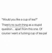 """Silly question: Would you like a cup of tea?""""  There's no such thing as a stupid  question... apart from this one. Of  course l want a fucking cup of tea pal  FB The Archbishop of Banterbury Silly question"""
