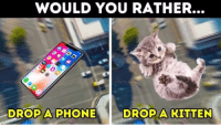 Phone: WOULD YOU RATHER.  DROPA PHONE  DROP A KITTEN