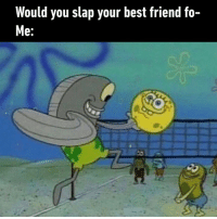 Best Friend, Dank, and Friends: Would you slap your best friend fo-  e: That's what best friends do