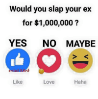 Love, Memes, and Haha: Would you slap your  ex  for $1,000,000  YES NO MAYBE  nial MAnh  Haha  Like  Love