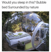 Think about waking up middle of the night and there is someone outside the bubble: Would you sleep in this? Bubble  bed Surrounded by nature Think about waking up middle of the night and there is someone outside the bubble