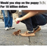 Funny, Puppies, and Puppy: Would you step on the puppy  For 18 billion dollars https://t.co/1yocuevIox