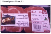 Beef, Memes, and Best: Would you still eat it?  coles  Beef  SCOTCH FILLET STEAK  My name was  Chloe  I wanted to live!BEST BEFORE  TOTAL PRICE S PRICES/kg  $19.07 33.00  Your 'Personal  choice' killed me!  DON'T BUY IT  NET kg  0.578kg  Coles I'll be out there looking for one with my name on it like them Coke cans