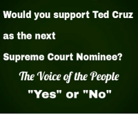 """What say you? #SCOTUS #CruzCrew #TrumpPence2016 #MAGA #SilentMajority #Constitution facebook.com/exposethetruthtoday: Would you support Ted cruz  as the next  Supreme Court Nominee?  The Voice of the People  """"Yes"""" or """"No"""" What say you? #SCOTUS #CruzCrew #TrumpPence2016 #MAGA #SilentMajority #Constitution facebook.com/exposethetruthtoday"""