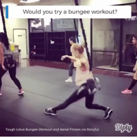 Memes, Lotus, and Tough: Would you try a bungee workout?  Tough Lotus Bungee Workout and Aerial Fitness via Storyful This looks like a fun way to get your sweat on! diply diplyvideo instavideo workout fitness sweat