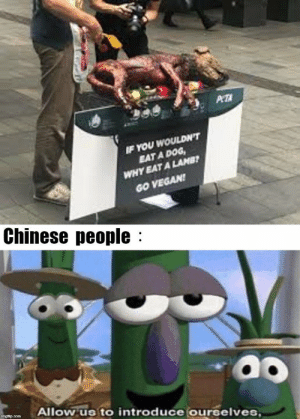 Nice try Peta, nice try by TRC_0Q MORE MEMES: WOULDN'T  EAT A DOG  YEAT A LAMB  IF YOU  WHY  GO VEGAN  Chinese people:  Allow us to introduce ourselves Nice try Peta, nice try by TRC_0Q MORE MEMES