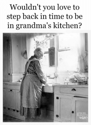 Love, Memes, and Time: Wouldn't you love to  step back in time to be  in grandma's kitchen?  LessonS  Lfe