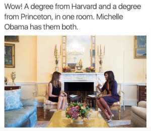 One Room: Wow! A degree from Harvard and a degree  from Princeton, in one room. Michelle  Obama has them both.