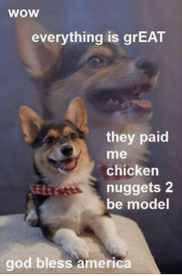 America, God, and Memes: wow  everything is grEAT  they paid  me  chicken  nuggets2  be model  god bless america Sometimes I wish I was paid in nuggets... :(