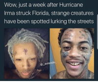 Blackpeopletwitter, Lurking, and Streets: Wow, just a week after Hurricane  Irma struck Florida, strange creatures  have been spotted lurking the streets  @extendo  一 <p>Niggas became priests of Cthulhu (via /r/BlackPeopleTwitter)</p>