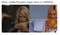 Wow, Unreal, and Origin: Wow, Leslie Knope's origin story is UNREAL