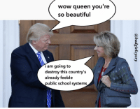 am i doing this right meme betsydevos: wow queen you're  so beautiful  i am going to  destroy this country's  already feeble  public school systems am i doing this right meme betsydevos