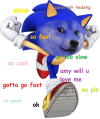 Sonic the Hedgedoge: WOW  so fast  so cool  gotta go fast  so speed  ok  antaeh hedeh  o slow  amy will u  love me  A no pls Sonic the Hedgedoge