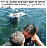 dolphinlivesmatter - - - - - fun funny pun puns punny meme memes fun life goals lit pics beach humor cleanmeme joke jokes laugh laughs giantmegasponge sponge4days laugh laughs haha love: wow so the poor dolphin proposes to her and  instead she kisses another guy right in front of  him  rude  MARRY ME dolphinlivesmatter - - - - - fun funny pun puns punny meme memes fun life goals lit pics beach humor cleanmeme joke jokes laugh laughs giantmegasponge sponge4days laugh laughs haha love