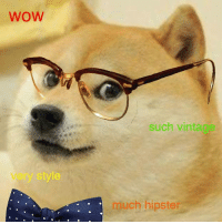 WOW  such vintag  much hipster