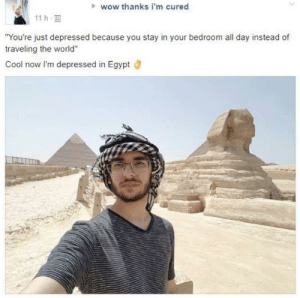 """meirl: wow thanks i'm cured  11 h  You're just depressed because you stay in your bedroom all day instead of  traveling the world""""  Cool now I'm depressed in Egypt meirl"""